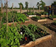 Gardening Vegetables Organic CD Horticulture 30 Books Garden Seeds Nursery Fruit