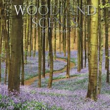 2021 Wall Calendar  Woodland Scenes Trees & Forests, with 180 Reminder Stickers
