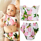 2Pcs Summer Baby Girls Clothes Set Floral Lace Sleeve Tops Shorts Outfits 0-24M