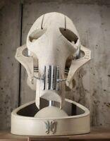 Star Wars Galaxy's Edge General Grievous Mask Statue Dok Ondars Figure IN HAND