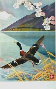 Original vintage poster SWISS HOLIDAYS LAKE DUCK 1945