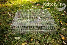 Live Catch Trap - Rat multi-catch - Galvanised