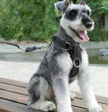 Adjustable Dog Safety Seat Belt Harness Restraint Size Small