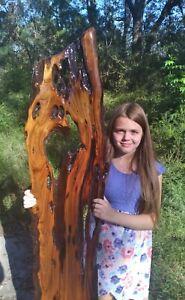 7+ Years Selling Sinker Cypress on ebay! Underwater Recovered Burl Wood Wall Art