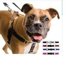 No Pull Freedom Dog Harness TRAINING PACKAGE includes Leash - Made USA  2 Hounds