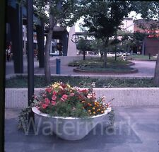 1977 Photo slide  Shopping Center South Bend IN #1