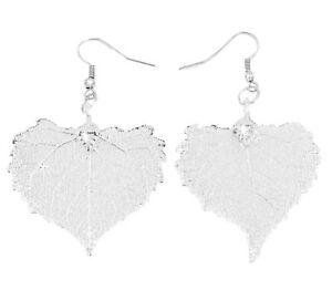 Zhannel Real Leaf Hook Drop EARRINGS COTTONWOOD Silver Dipped Genuine Leaf New