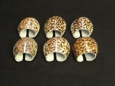 SET OF 6 COWRIE COWRY SHELL NAPKIN RINGS LEOPARD SPOTS NATURAL NAUTICAL OCEAN