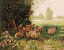 Pike Sidney Sheep Sheltering Beneath The Trees Print 11 x 14   #4433