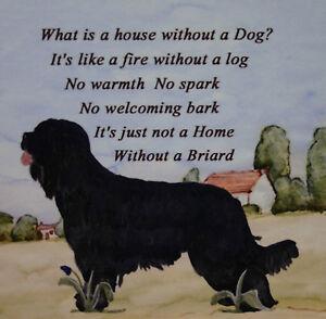BRIARD DOG HARDBOARD PLAQUE TILE WATERCOLOUR DESIGN PRINT SANDRA COEN ARTIST