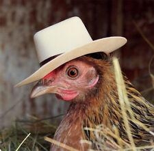 Birthday Blank Card - Sheriff Ginny Hen Chicken Fowl with Cowboy Hat & Freepost!