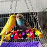 FJ- Pet Bird Parrot Parakeet Budgie Cockatiel Cage Hammock Swing Toys Hanging To