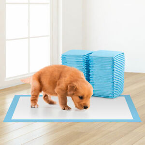 50 Large Puppy Training Trainer Train Pads Toilet Pee Wee Mats Poo Dog Pet Cat