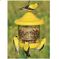 "Songbird Essentials ""Clingers Only"" Bird Feeder, Yellow SE7011"