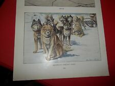 Louis A Fuertes American Eskimo bookplate from 1919 National Geographic Mag