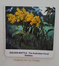GOLDEN WATTLE PLANT 'Australian Floral Emblem' FRIDGE MAGNET - M551
