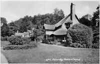 POSTCARD   SOMERSET  SELWORTHY  Green  and  Church    RP