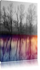 Árboles Espejo Situado en el Agua Foto en Lienzo Decoración Pared Impreso