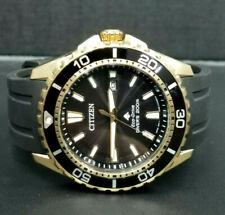 Citizen E168-S111528 Diver's 200m Eco-Drive Watch