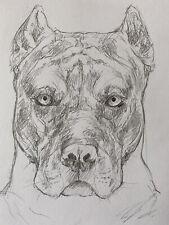 More details for american pit bull terrier- bully sketch original drawing art pet portrait