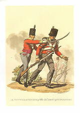 WELLINGTONS ARMY MILITARY UNIFORM PRINT ~ OFFICER & PRIVATE 52 REGIMENT INFANTRY