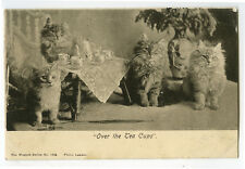 c 1908 British English Teatime Cats Girls Toy TinyTea Party photo postcard