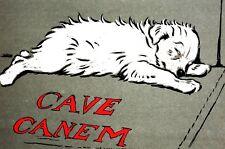 Beware of Dog 1910 CAVE CANEM WHITE PUPPY SLEEPING at DOOR Cecil Aldin Print