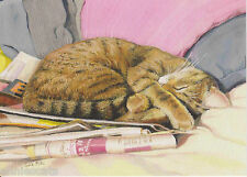 'Sunday Papers' Ginger Cat Blank Greetings Card From Painting By Celia Pike 012