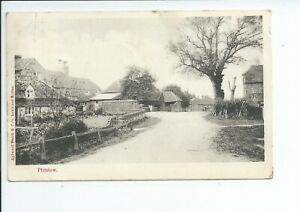 Printed postcard of the Main Street in Plaistow West Sussex good condition
