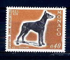 MONACO - 1970 - Esposizione canina internazionale di Montecarlo. Dobermann