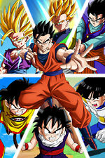 Dragon Ball Z Poster Gohan from Saiyan to Boo Sagas 12in x 18in Free Shipping
