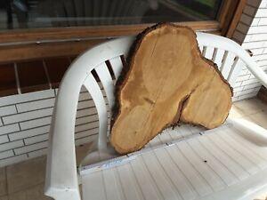 Baumscheibe Eiche ca 60 cm ×5cm Epoyx, Tischplatte, Holzscheibe