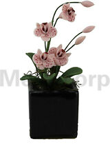 Dollhouse Decorate 1:12 Scale Miniature Pink Butterfly Orchid and Flower Pot