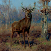 Deer Tile Backsplash Robert Binks Lodge Art Ceramic Mural REB007