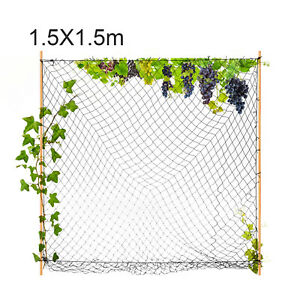 "Elasticated Scrog Net 1.5mx1.5m 50mm 2"" mesh Hydroponics Plant Support Grow Tent"
