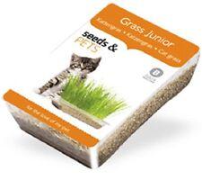 Hierbas para Gatos especial CACHORROS - CULTIVO EN CASA