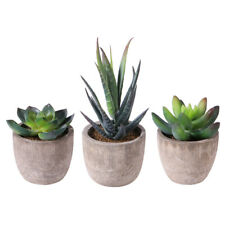 3Pcs Artificial Fake Succulent Plant In Pot Mini Potted Plants Home Garden Decor