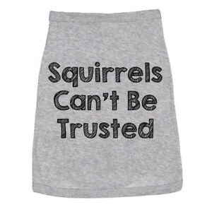 Dog Shirt Squirrels Cant Be Trusted Funny Clothes For Family Pet (Heather Grey)