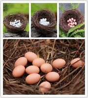 Novelty Twig Bird Nest / Small Speckled 10pcs Eggs Home Nature Craft Decoration