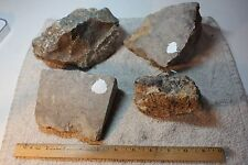 Stromatolite Cutting Rough - Fossil Algee! 8 Pounds of cutting rough! 326