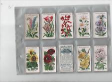 cigarette cards old english garden flowers full set 1910