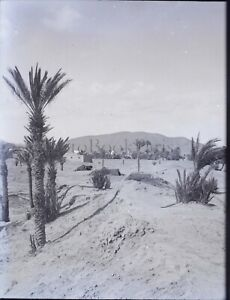 MAGHREB Maroc Algérie Tunisie c1900, NEGATIF Photo Stereo Plaque Verre VR10L6n3