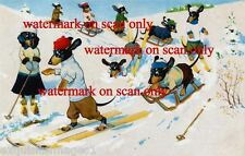 Vintage Cute Dressed Dachshund Dogs Skiing & Sledding~Snow~NEW Large Note Cards