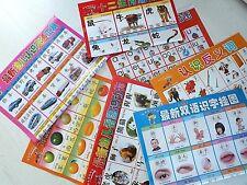 7 LEARN CHINESE LANGUAGE MANDARIN PRONUNCIATION WALL CHART POSTER BOOK W ENGLISH