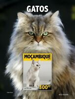Mozambique - 2019 Cat Breeds on Stamps - Stamp Souvenir Sheet - MOZ190308b