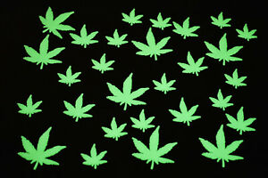 DirectGlow 50 Piece Glow in the Dark Marijuana Weed Pot Leafs Wall Ceiling Decor