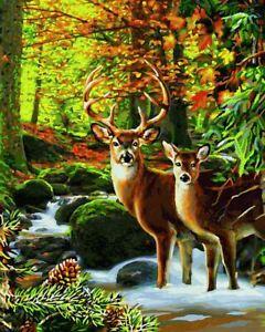Schipper: Hirsche im Wald