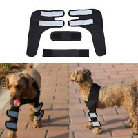 Dog Hock Rear Leg Joint Wrap Protects Wounds As They Heal Compression Wrap  C8F7