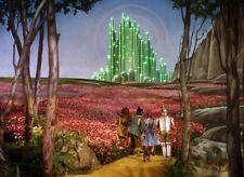 The Wonderful Wizard of Oz -L.F. Baum - Audio Book Mp3 CD - *BUY 4 GET 1 FREE*