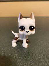Littlest Pet Shop 750 White Brown Great Dane Dog Teardrop Eyes Target Exclusive